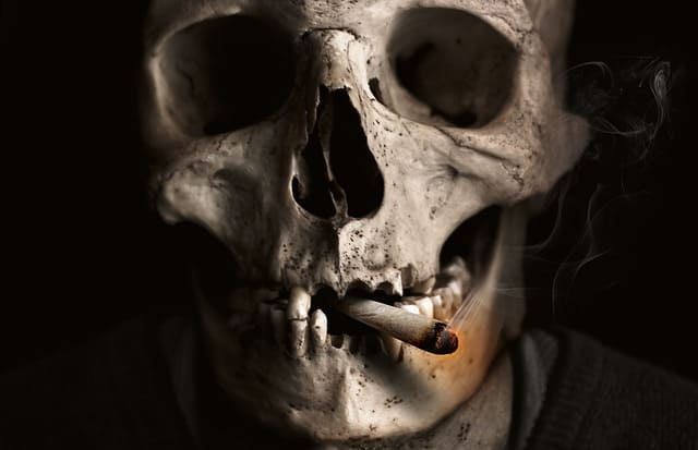 What effect does smoking have on human health?