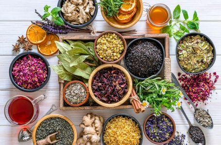 Best Herbs for Energy: Increase your health with them in (2021)