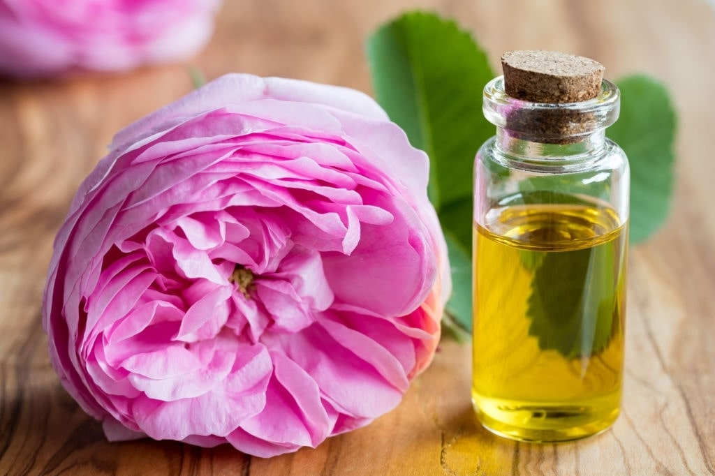 Essential Garlic oil for young children: